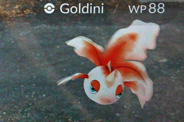 Rheinauhafen - Pokémon Go-Spot