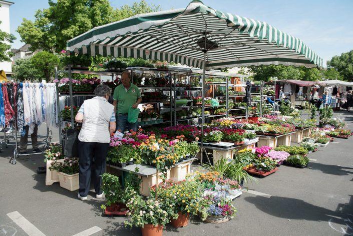 Wochenmarkt auf dem Auerbachplatz - Wochenmärkte in Köln