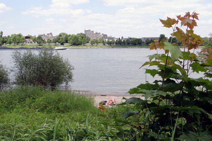 Camping Berger in Köln-Rodenkirchen, Rhein