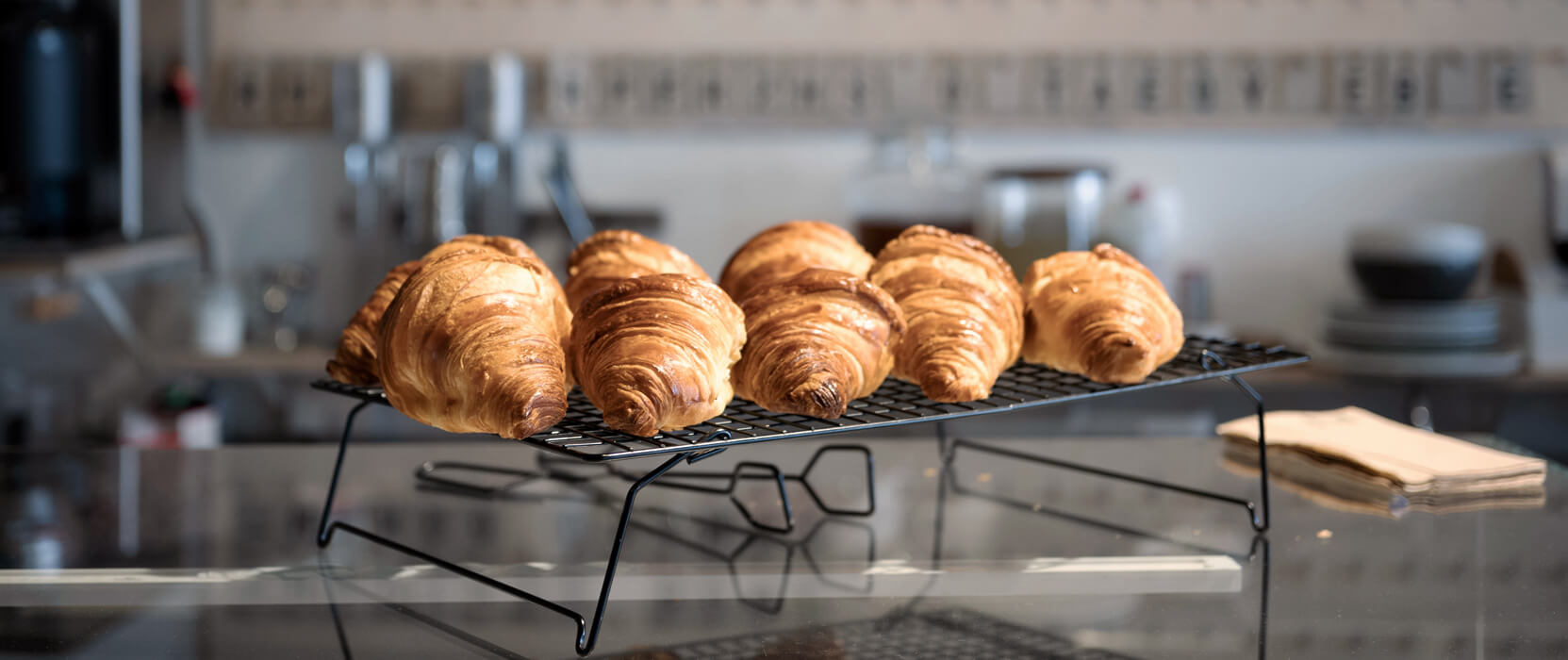 Das beste Frühstück-to-go in Köln | Kaffeesaurus